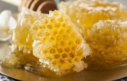 Можно ли есть соты от меда?