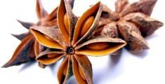 Лечебные свойства и применение семян аниса