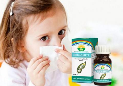 применение масла эвкалипта при насморке у детей