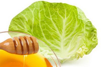 капустный лист с медом от кашля