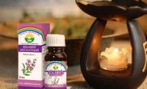 Применение эфирного масла мускатного шалфея