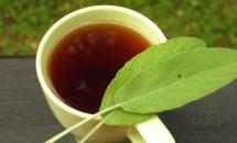Можно ли пить шалфей как чай?